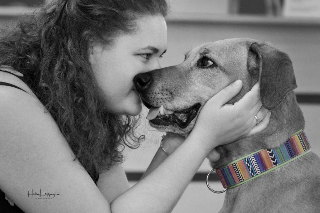 Tierfotografie Hund Bietigheim