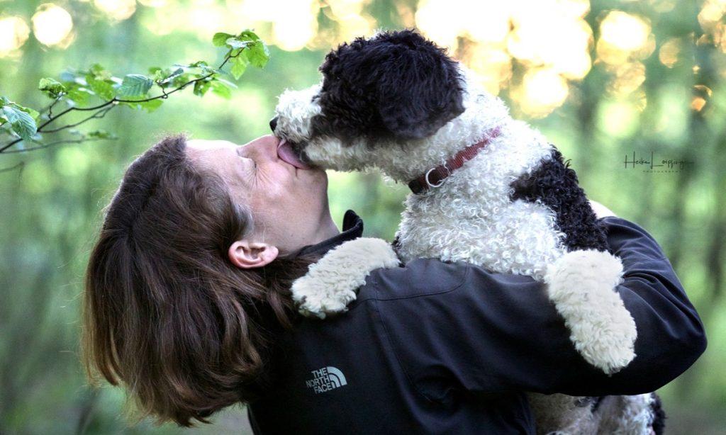 Tierfotografie Hund Ludwigsburg