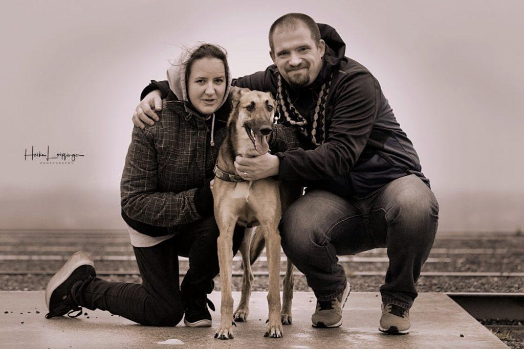 Tierfotografie Hund mit Mensch