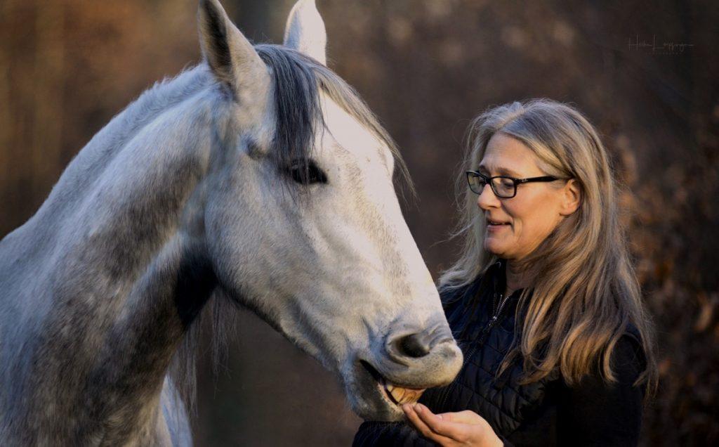 Tierfotografie Pferd Hochdorf