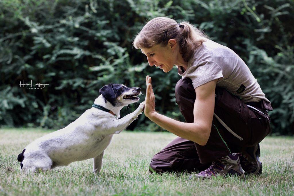Tierfotografie Hund Waldenbuch