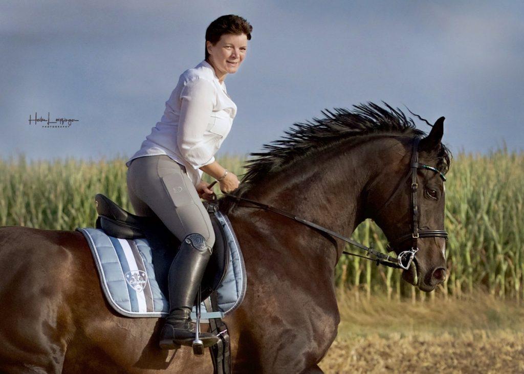 Tierfotografie Pferd Reiter