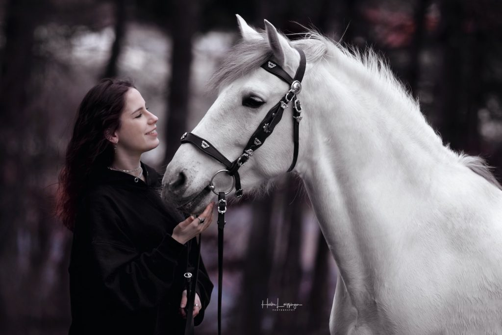 Tierfotografie Pferd Rutesheim